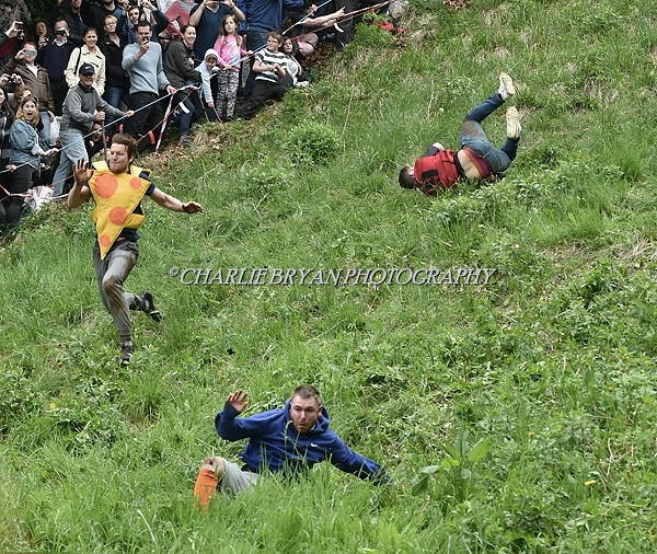 Gloucester U.K.Panda losses its head at the annual cheese rolling event at Coopers Hill Gloucestershire.